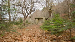 Dolmen in the forest - stock footage