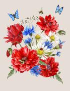Stock Illustration of Summer Vintage Watercolor Greeting Card with Blooming Red Poppies