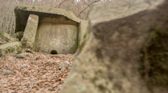Dolmen in the forest Stock Footage