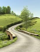 Country lane in summer time Stock Illustration
