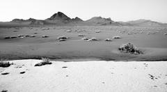 High Contrast Monochrome Black White Bonneville Salt Flats - stock photo