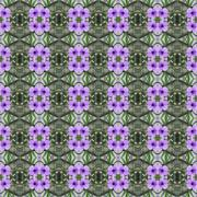 Wonderful of Acanthaceae flower abstract background - stock illustration
