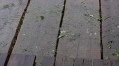 Rain drops on floors boards Stock Footage