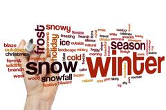 Winter word cloud - stock photo