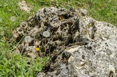 Part of authentic rockery in field - stock photo