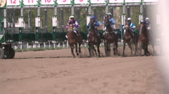 Moscow,Russia, Central Moscow Hippodrome,MAY 2015,starting thoroughbred race - stock footage