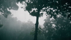 pouring rain - stock footage