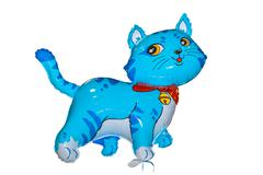 Baloon Cat Blue Stock Photos