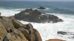 Antonio Nobre's beautiful poem on rock, Porto Stock Footage