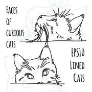 Vector illustration of two curious cat muzzles Stock Illustration