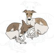 Vector illustration of two Italian greyhound spotted - stock illustration
