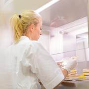 Life science researcher grafting bacteria. - stock photo