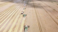 Fly above Combine Harvesters Harvesting Wheat and discharging to truck Stock Footage