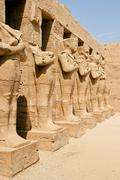 Ancient ruins of Karnak temple in Egypt. Stock Photos