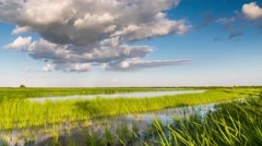 Time lapse. Russia. Clouds above the river Don with reeds. Stock Footage
