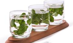 Infused fresh fruit water of mint leaf. isolated over white - stock photo