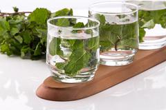 Stock Photo of Infused fresh fruit water of mint leaf. isolated over white