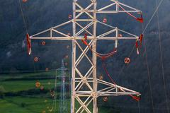 Towers and power lines with diverter - stock photo