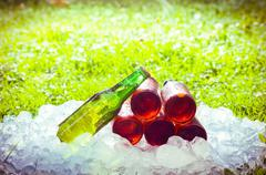 Beer and ice,  out of focus grass with an intense shinny light Stock Photos