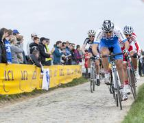 The Cyclists in Full Effort - Paris Roubaix 2014 - stock photo