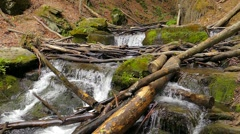 Waterfall in the mountains near the village Pylypets, Carpathians (slow motion) Stock Footage