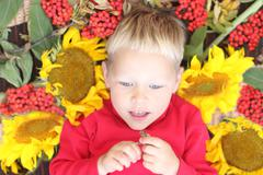 Little handsome boy lies among sunfloweers and berries at autumn day Stock Photos