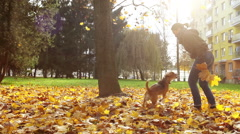 Young lady plays with her dog nearby their buiding in town Stock Footage