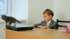 Businessman And Kitty Stock Footage
