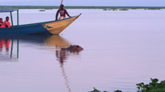 Boat full of tourists passes a hippo Stock Footage
