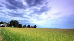 Tracking shot of a field alongside a country road in Copenhagen, Denmark Stock Footage