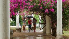 1 Students Friends Young People Laughing Running In The Rain Stock Footage