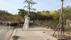 girl in vietnamese walks along road and goats pass by - stock footage