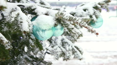 Christmas tree branch under snow. Stock Footage