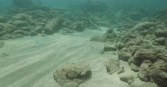 Stock Video Footage of Underwater Caesarea antiquities anchors traveling 4K
