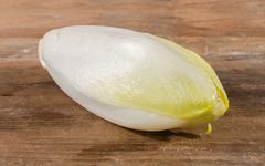 Stock Photo of Fresh chicory