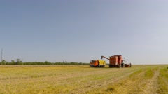 Near the combine is a truck full of grain. Eastern Ukraine. Stock Footage