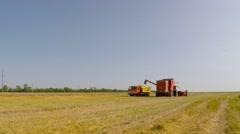 Near the combine is a truck full of grain. Eastern Ukraine. - stock footage
