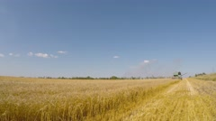 The combine mows wheat. Eastern Ukraine. Stock Footage