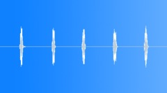 Brazilian Bat Sound Effect