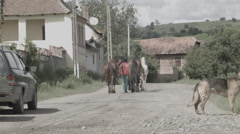 Village Street with Dog and Horses -Cine Gamma- Stock Footage