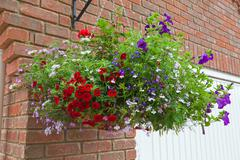 Hanging basket of colorful flowers in full bloom - stock photo