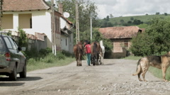 Village Street with Dog and Horses -Graded- Stock Footage