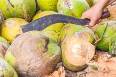 Man,show only hand, chopping coconut by big knife Stock Photos