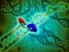 Microscopic view of DNA binding. Stock Illustration