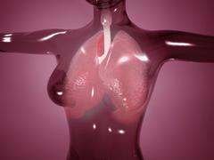 Conceptual image of female body with lungs, glassy look. Stock Illustration