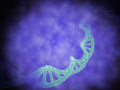 Stylized view of strands of human DNA. - stock illustration