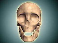 Conceptual image of human skull, front view. - stock illustration