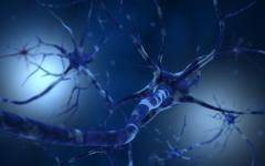 Conceptual image of neuron. Stock Illustration