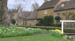 Spring Daffodils by Footbridge over River Eye in Lower Slaughter Village in t Stock Footage