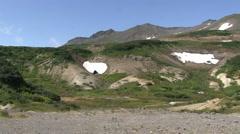 Valley of Mutnovsky volcano. Stock Footage